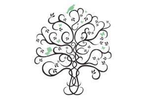 Logo Illustration, Wellington